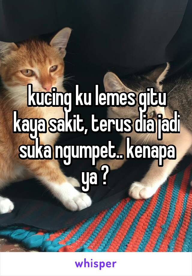 kucing ku lemes gitu kaya sakit, terus dia jadi suka ngumpet.. kenapa ya ?