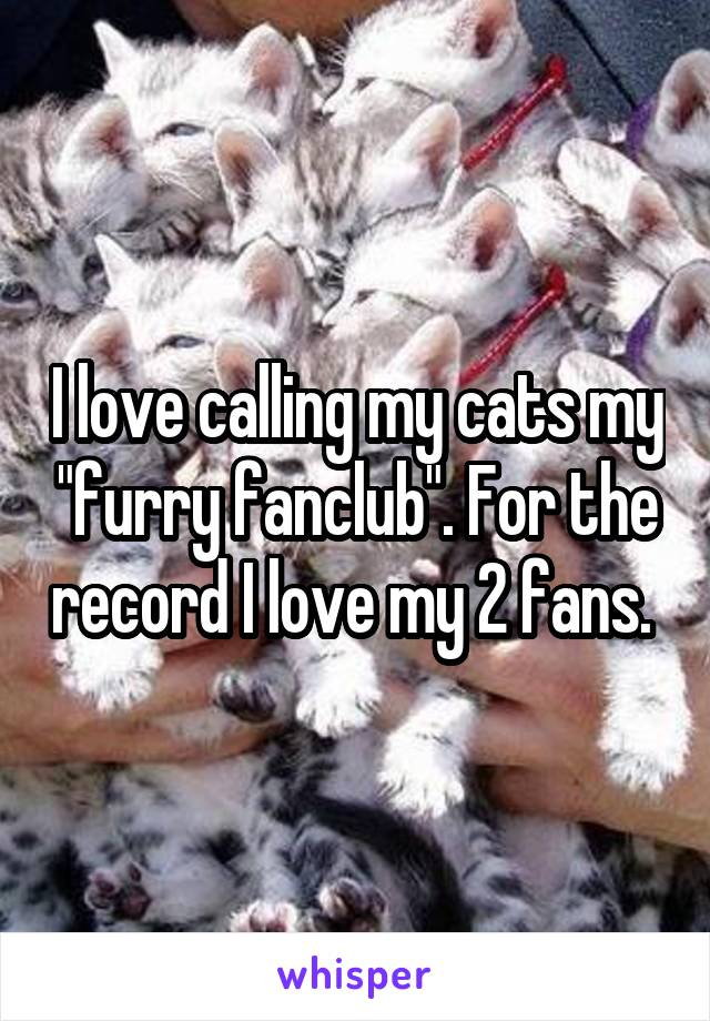 "I love calling my cats my ""furry fanclub"". For the record I love my 2 fans."