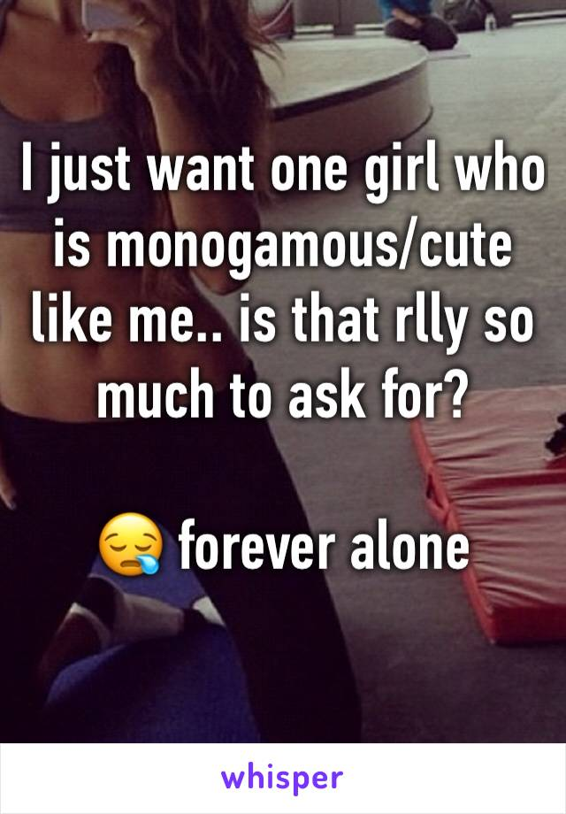 I just want one girl who is monogamous/cute like me.. is that rlly so much to ask for?   😪 forever alone