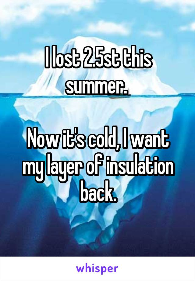 I lost 2.5st this summer.   Now it's cold, I want my layer of insulation back.