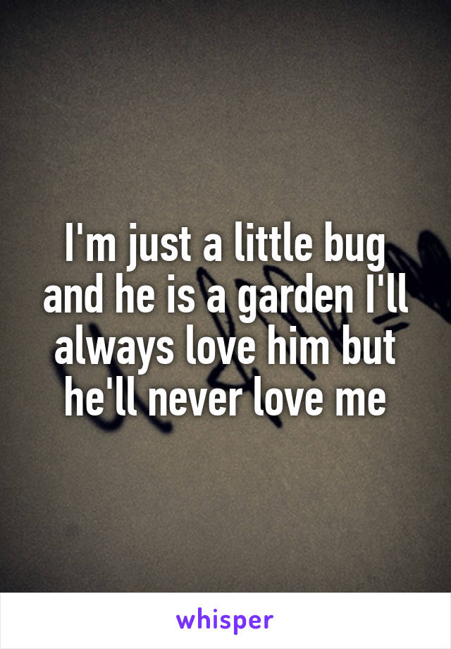 I'm just a little bug and he is a garden I'll always love him but he'll never love me