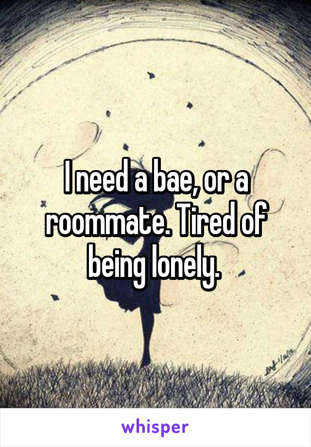 I need a bae, or a roommate. Tired of being lonely.