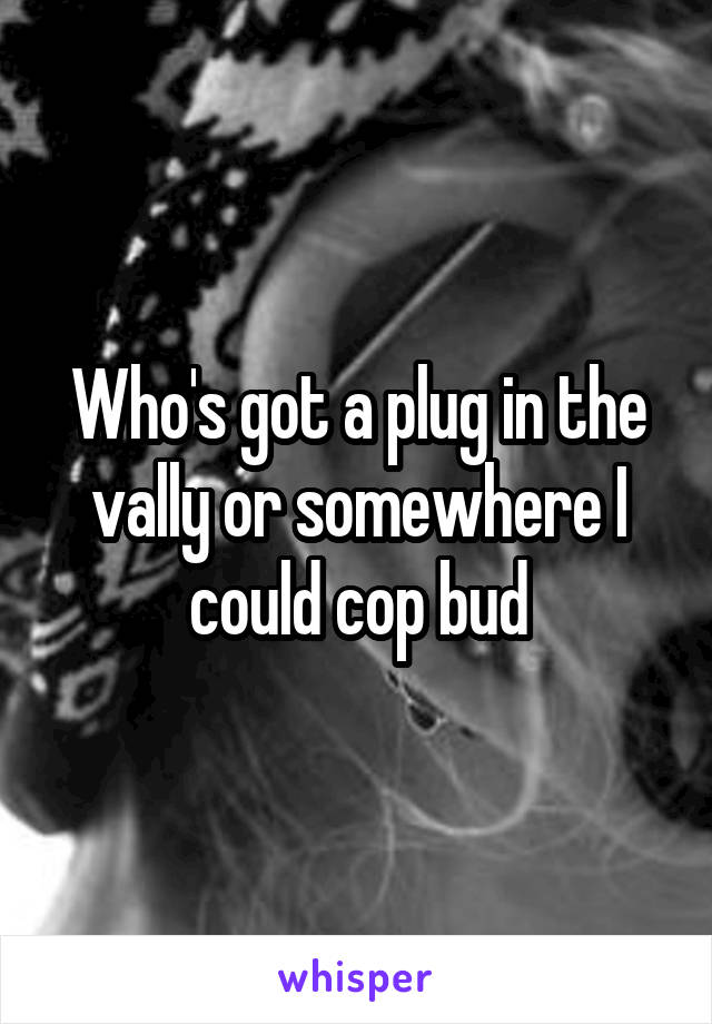 Who's got a plug in the vally or somewhere I could cop bud