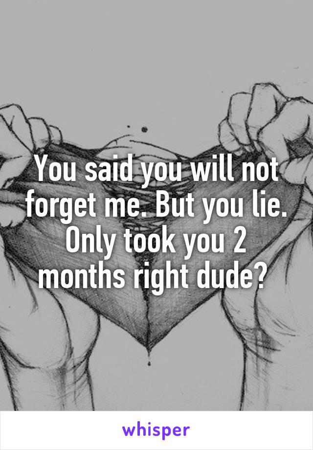 You said you will not forget me. But you lie. Only took you 2 months right dude?