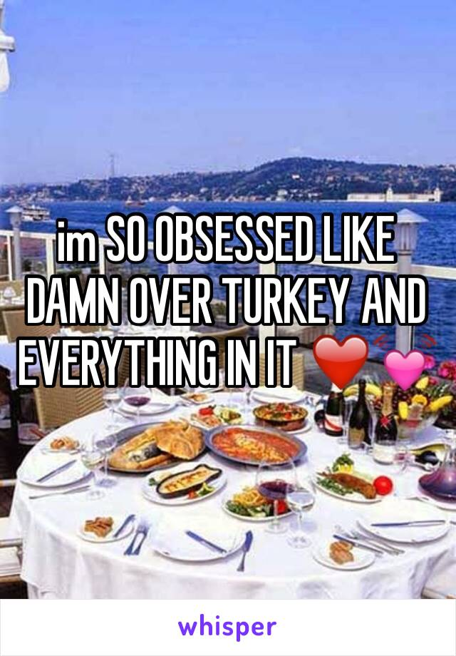 im SO OBSESSED LIKE DAMN OVER TURKEY AND EVERYTHING IN IT ❤️️💓