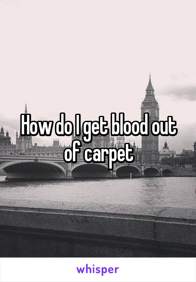 How do I get blood out of carpet