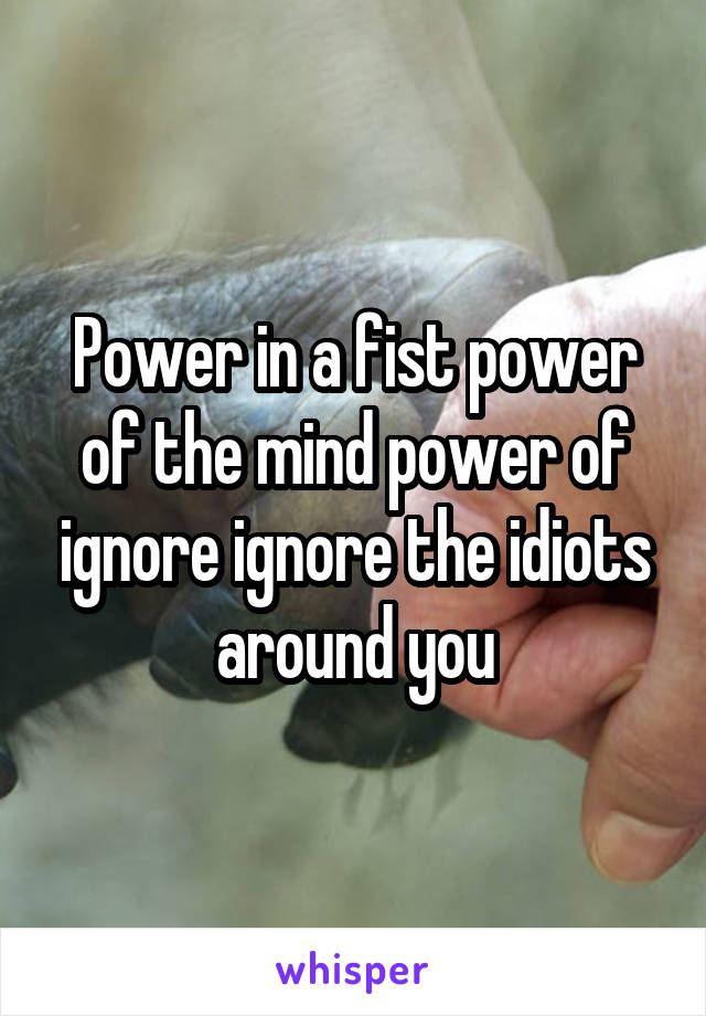 Power in a fist power of the mind power of ignore ignore the idiots around you