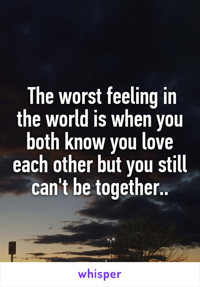 The worst feeling in the world is when you both know you love each other but you still can't be together..