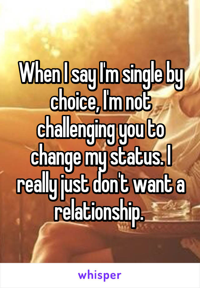 When I say I'm single by choice, I'm not challenging you to change my status. I really just don't want a relationship.