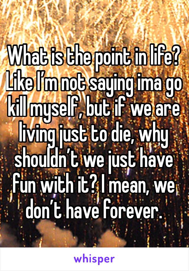 What is the point in life? Like I'm not saying ima go kill myself, but if we are living just to die, why shouldn't we just have fun with it? I mean, we don't have forever.