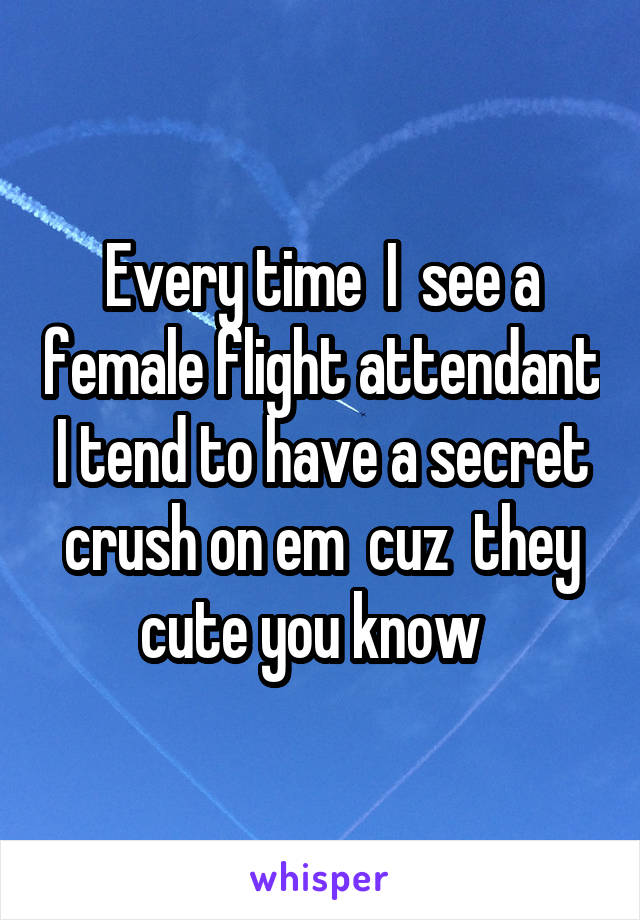 Every time  I  see a female flight attendant I tend to have a secret crush on em  cuz  they cute you know