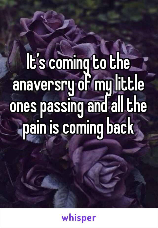 It's coming to the anaversry of my little ones passing and all the pain is coming back