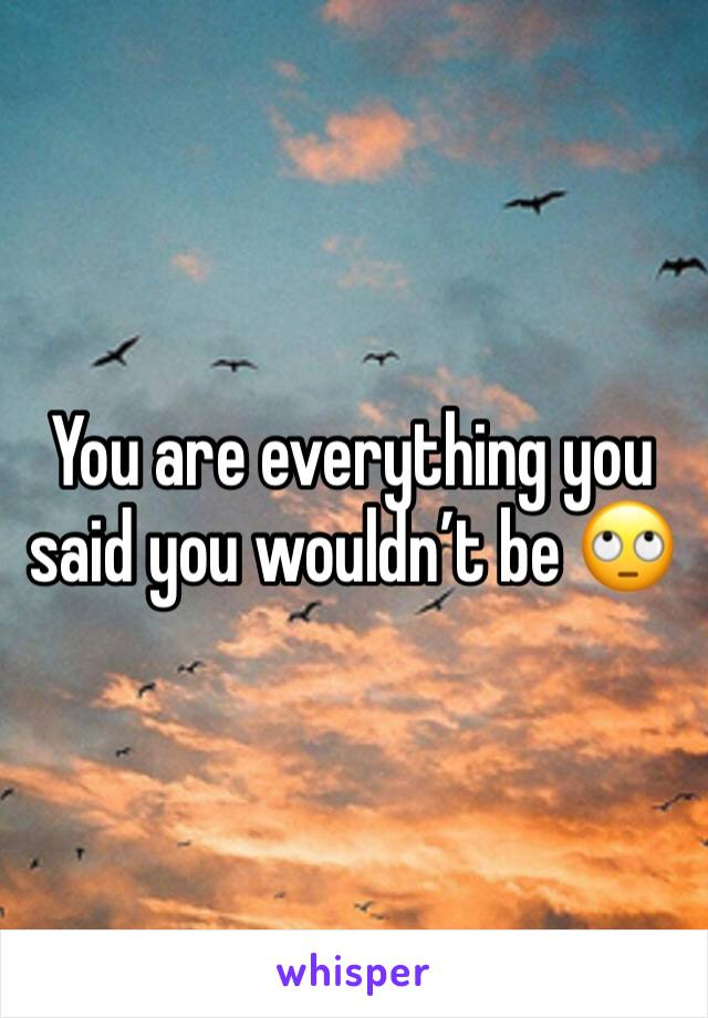 You are everything you said you wouldn't be 🙄