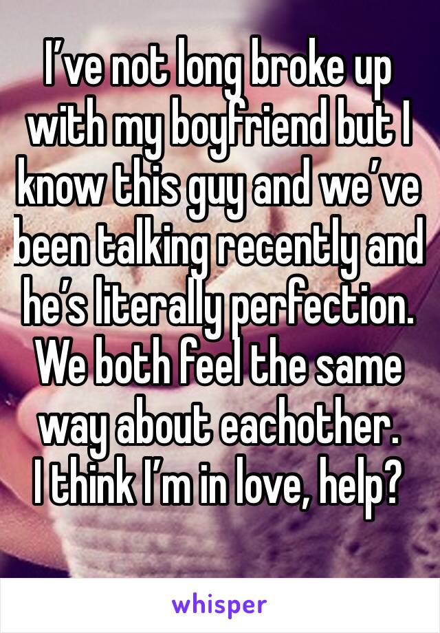 I've not long broke up with my boyfriend but I know this guy and we've been talking recently and he's literally perfection. We both feel the same way about eachother. I think I'm in love, help?