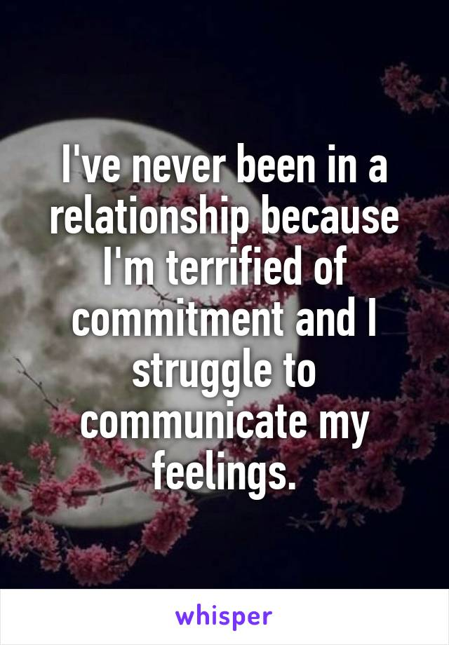 I've never been in a relationship because I'm terrified of commitment and I struggle to communicate my feelings.