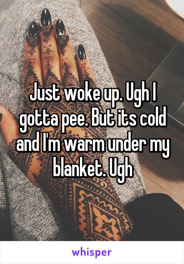 Just woke up. Ugh I gotta pee. But its cold and I'm warm under my blanket. Ugh