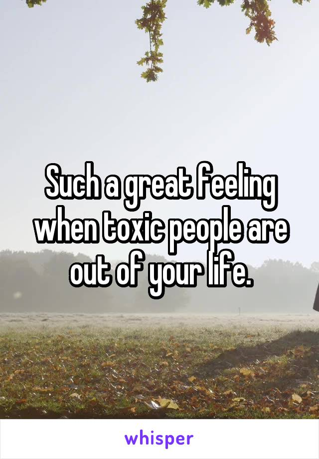 Such a great feeling when toxic people are out of your life.