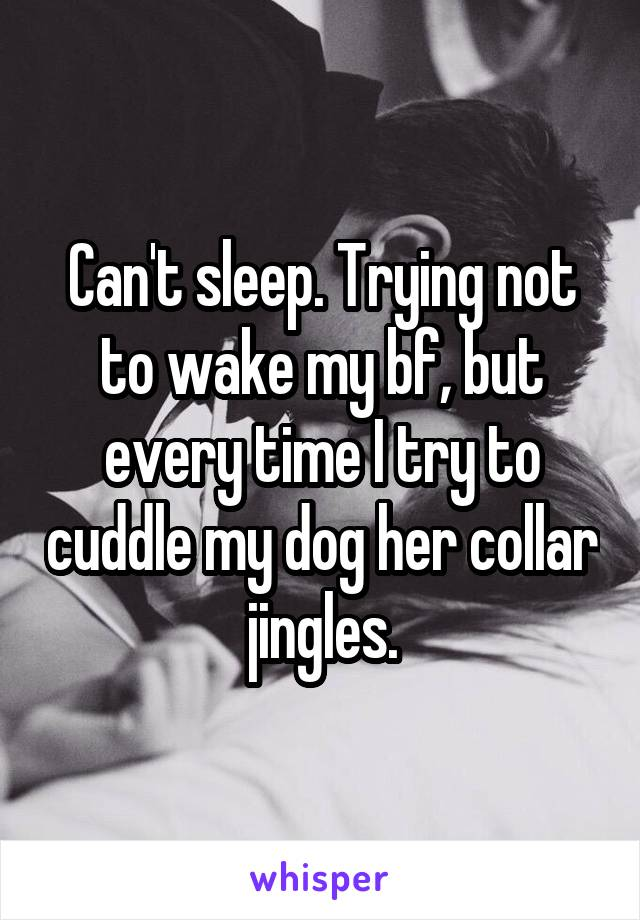 Can't sleep. Trying not to wake my bf, but every time I try to cuddle my dog her collar jingles.
