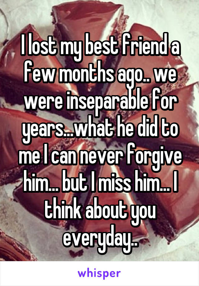 I lost my best friend a few months ago.. we were inseparable for years...what he did to me I can never forgive him... but I miss him... I think about you everyday..