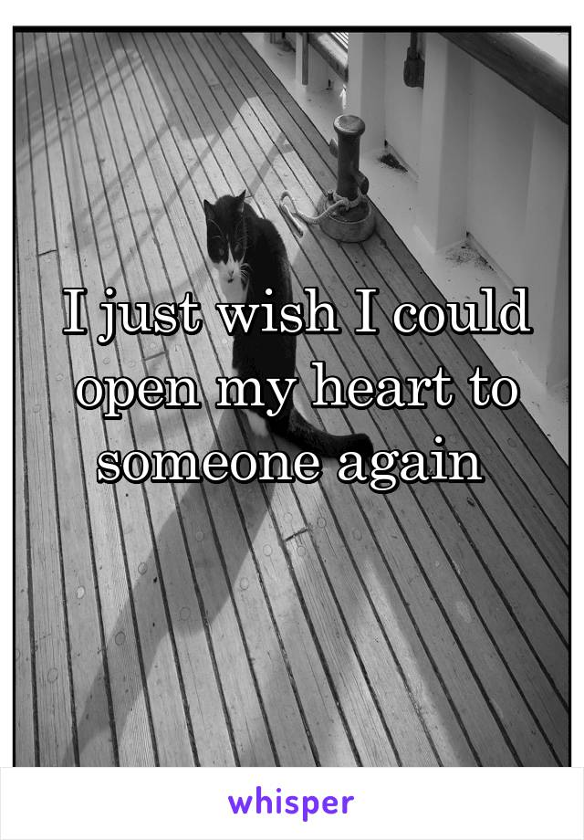 I just wish I could open my heart to someone again