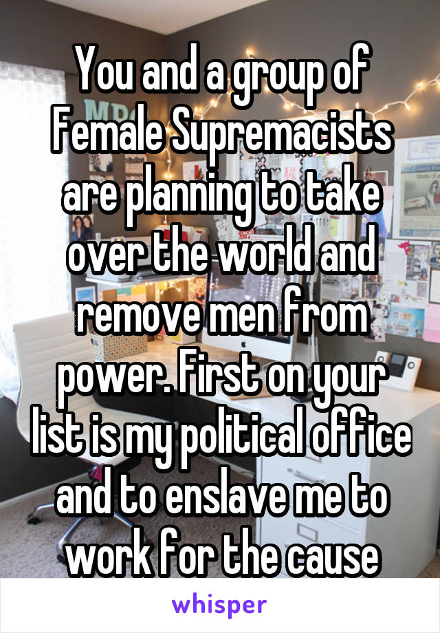 You and a group of Female Supremacists are planning to take over the world and remove men from power. First on your list is my political office and to enslave me to work for the cause