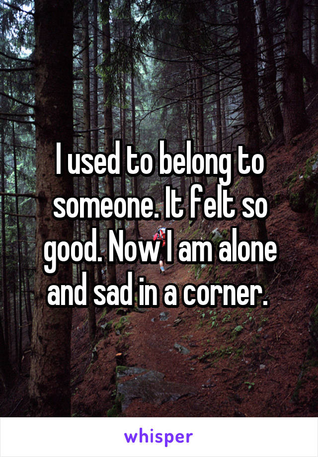 I used to belong to someone. It felt so good. Now I am alone and sad in a corner.