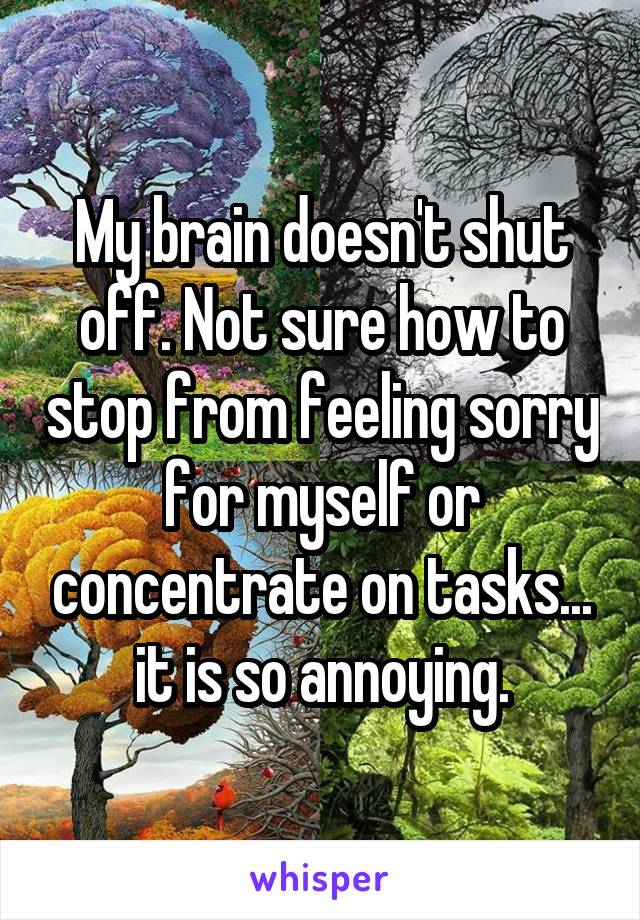 My brain doesn't shut off. Not sure how to stop from feeling sorry for myself or concentrate on tasks... it is so annoying.