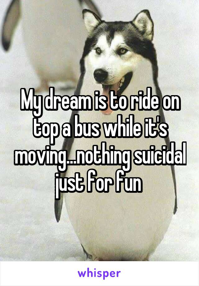 My dream is to ride on top a bus while it's moving...nothing suicidal just for fun