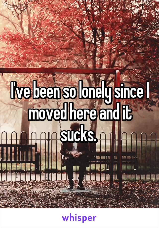 I've been so lonely since I moved here and it sucks.