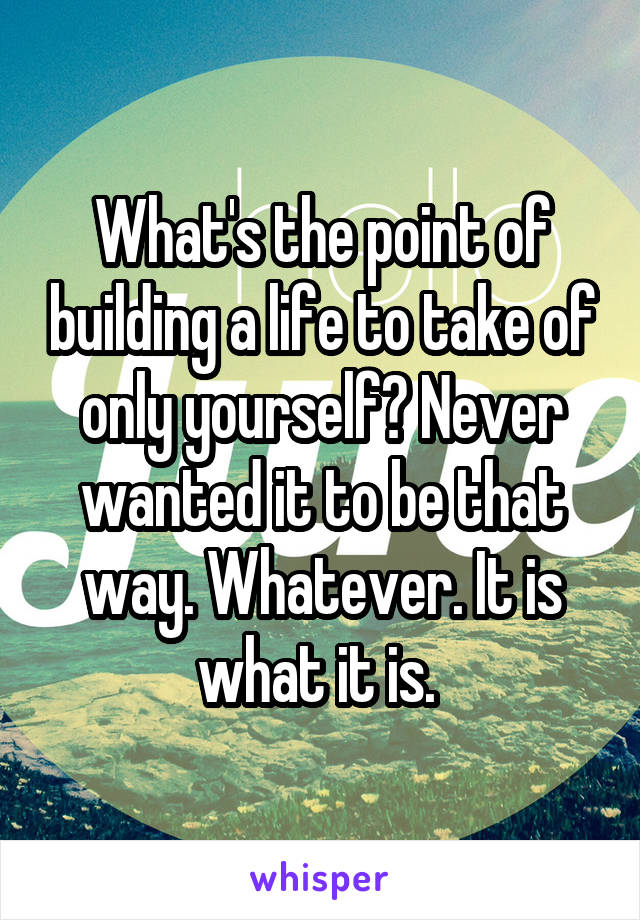 What's the point of building a life to take of only yourself? Never wanted it to be that way. Whatever. It is what it is.
