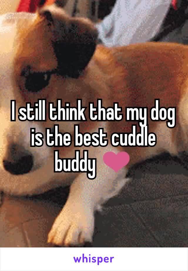 I still think that my dog is the best cuddle buddy ❤️