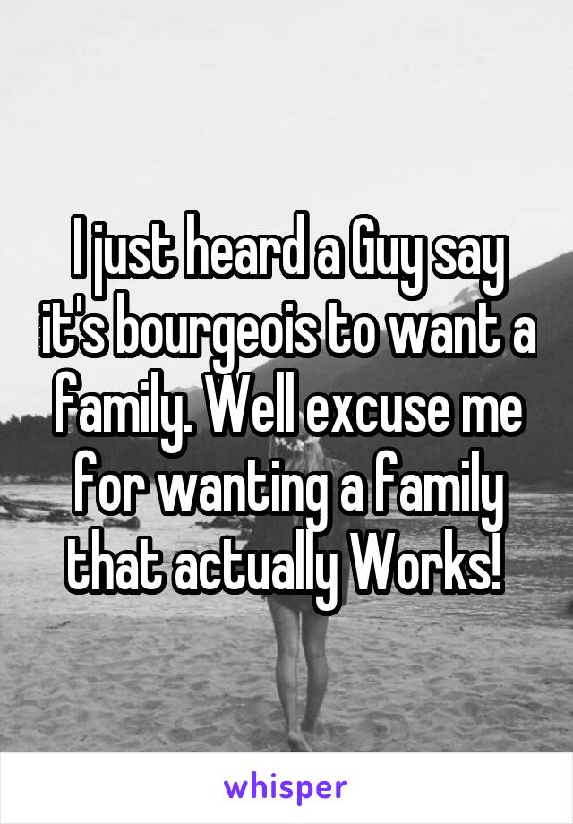 I just heard a Guy say it's bourgeois to want a family. Well excuse me for wanting a family that actually Works!