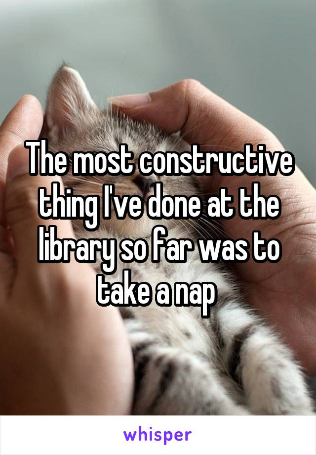The most constructive thing I've done at the library so far was to take a nap