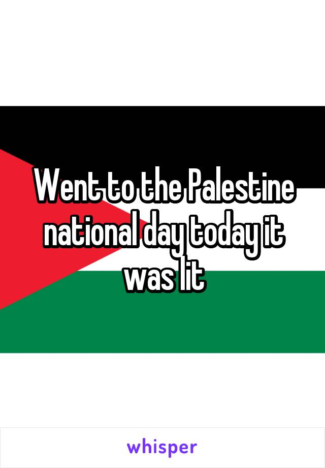 Went to the Palestine national day today it was lit
