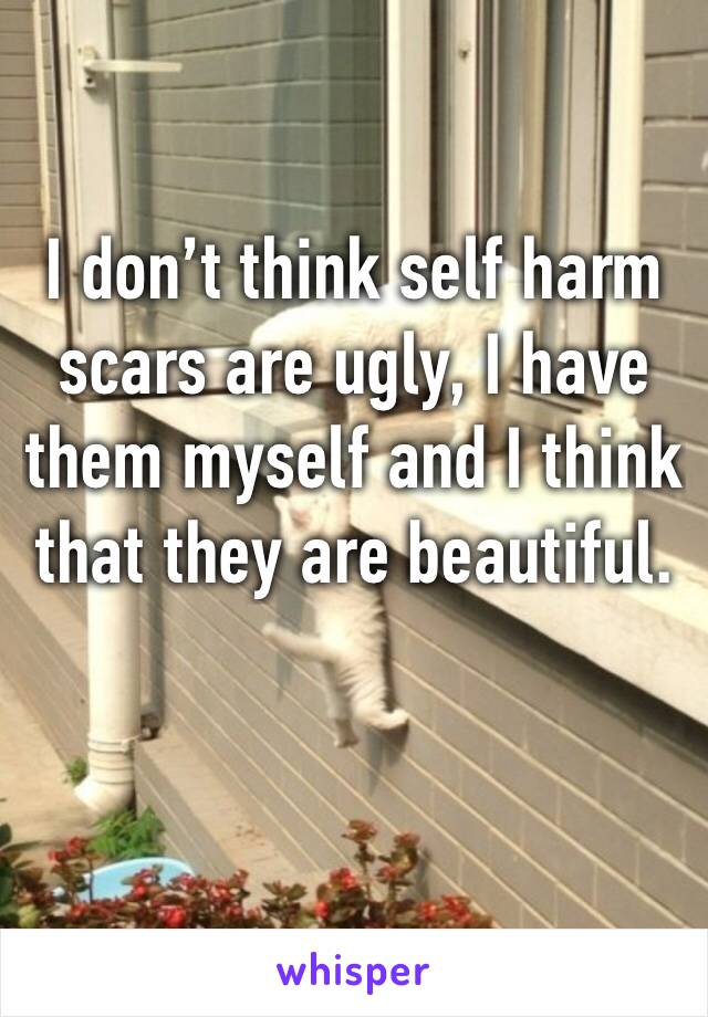 I don't think self harm scars are ugly, I have them myself and I think that they are beautiful.