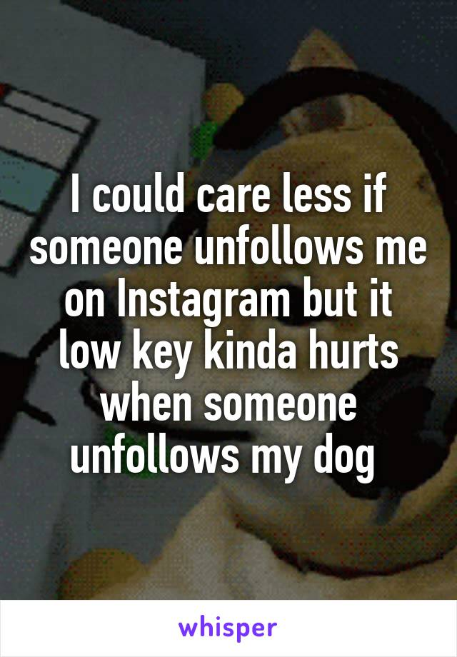 I could care less if someone unfollows me on Instagram but it low key kinda hurts when someone unfollows my dog