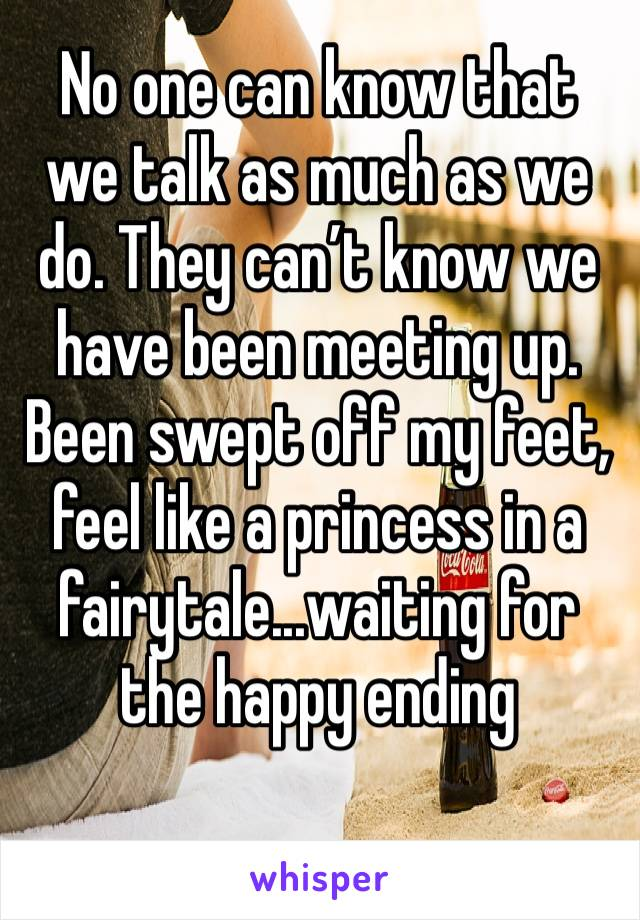 No one can know that we talk as much as we do. They can't know we have been meeting up. Been swept off my feet, feel like a princess in a fairytale...waiting for the happy ending