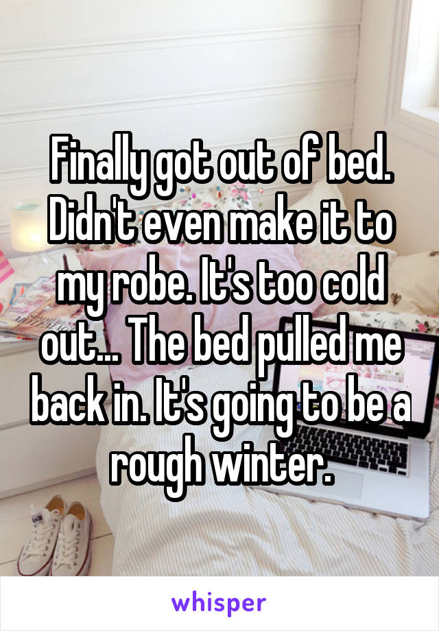 Finally got out of bed. Didn't even make it to my robe. It's too cold out... The bed pulled me back in. It's going to be a rough winter.