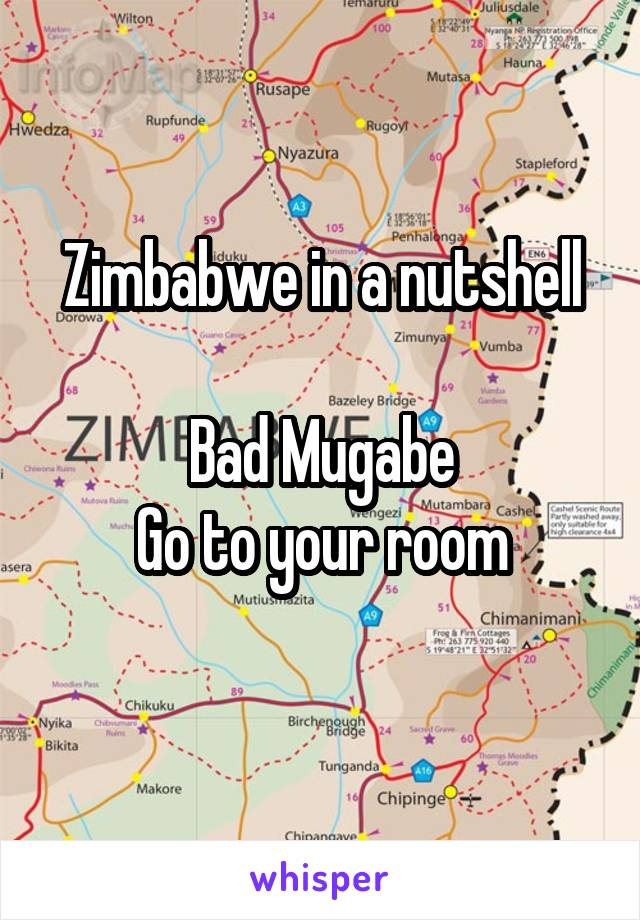 Zimbabwe in a nutshell  Bad Mugabe Go to your room