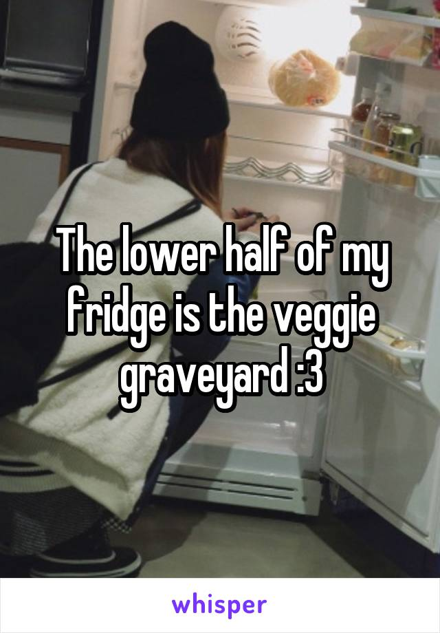 The lower half of my fridge is the veggie graveyard :3