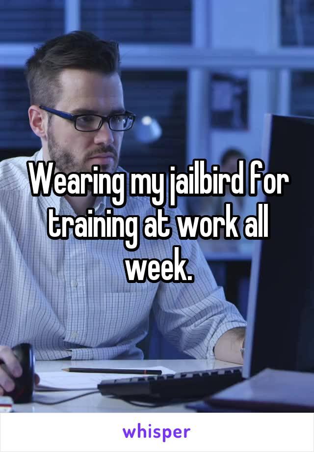 Wearing my jailbird for training at work all week.