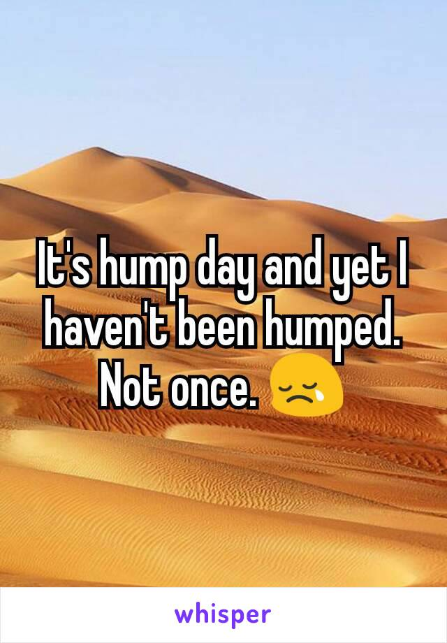 It's hump day and yet I haven't been humped. Not once. 😢