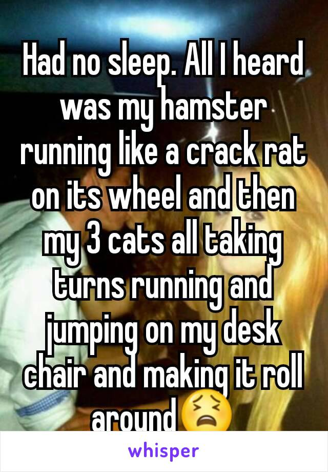 Had no sleep. All I heard was my hamster running like a crack rat on its wheel and then my 3 cats all taking turns running and jumping on my desk chair and making it roll around😫