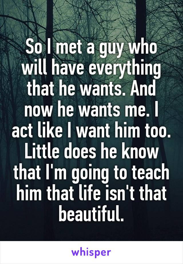 So I met a guy who will have everything that he wants. And now he wants me. I act like I want him too. Little does he know that I'm going to teach him that life isn't that beautiful.