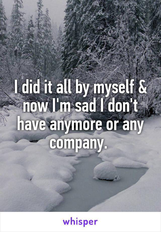 I did it all by myself & now I'm sad I don't have anymore or any company.