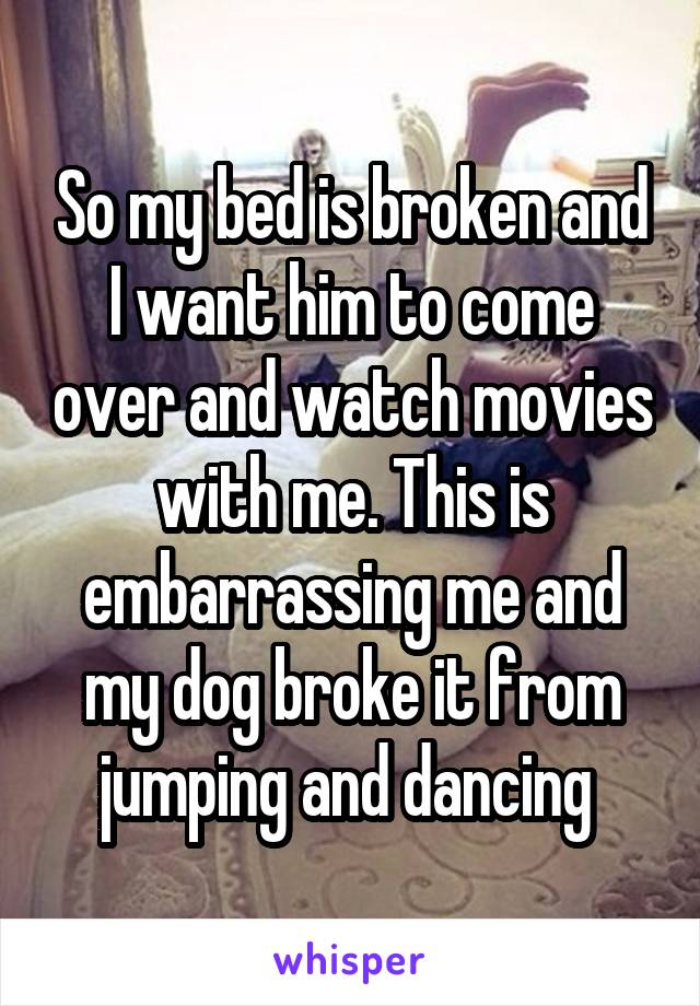 So my bed is broken and I want him to come over and watch movies with me. This is embarrassing me and my dog broke it from jumping and dancing