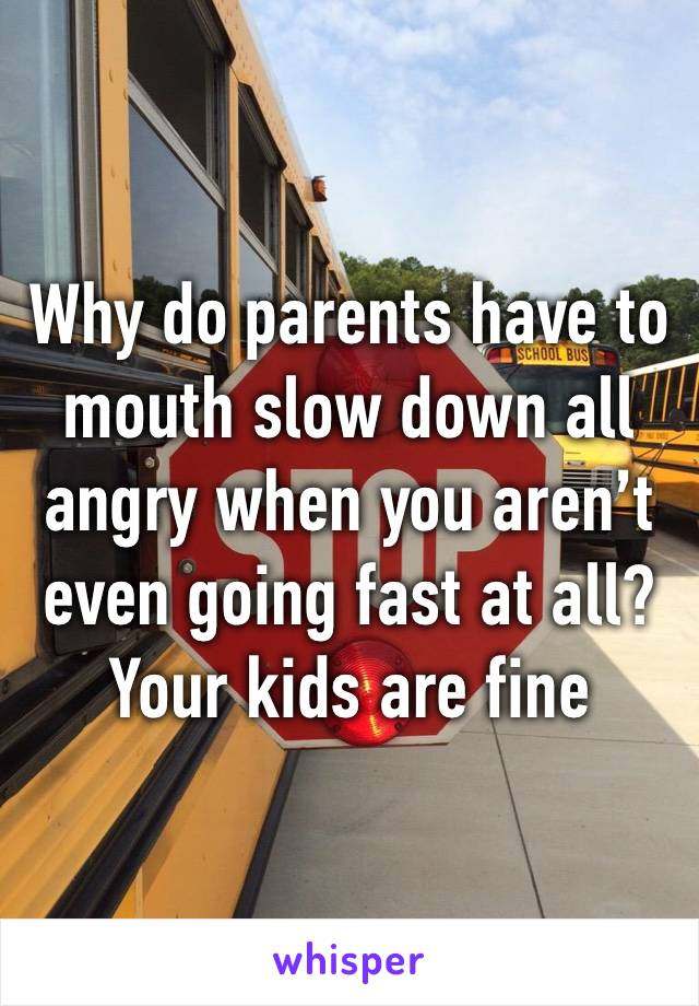 Why do parents have to mouth slow down all angry when you aren't even going fast at all? Your kids are fine