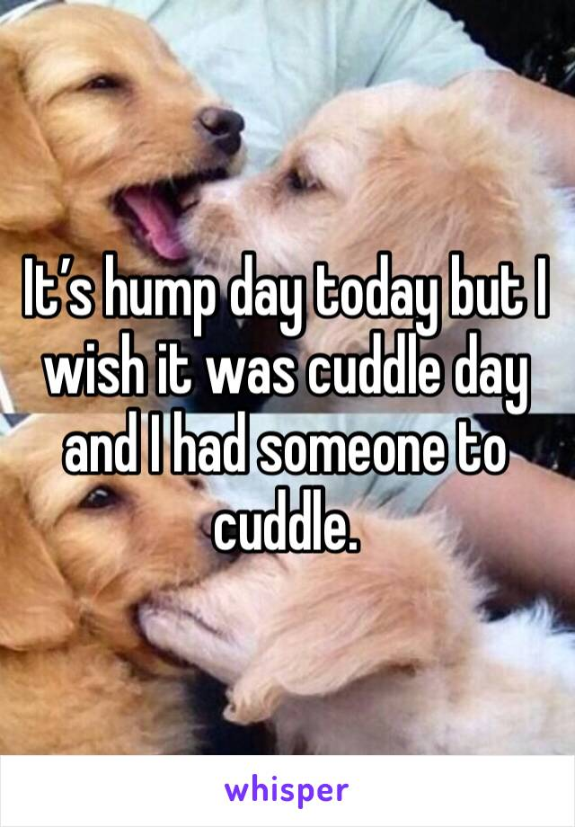 It's hump day today but I wish it was cuddle day and I had someone to cuddle.