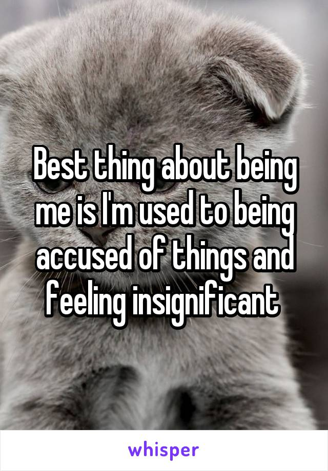Best thing about being me is I'm used to being accused of things and feeling insignificant