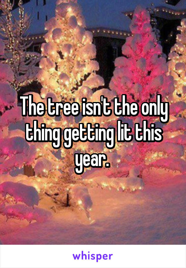 The tree isn't the only thing getting lit this year.